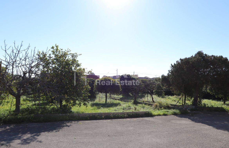 Villetta con terreno e dependance in contrada Falconara 19