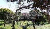 Villetta con terreno e dependance in contrada Falconara 20