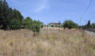 Lotto di terreno edificabile (4)
