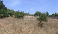 Lotto di terreno edificabile (6)