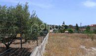 Lotto di terreno edificabile (9)