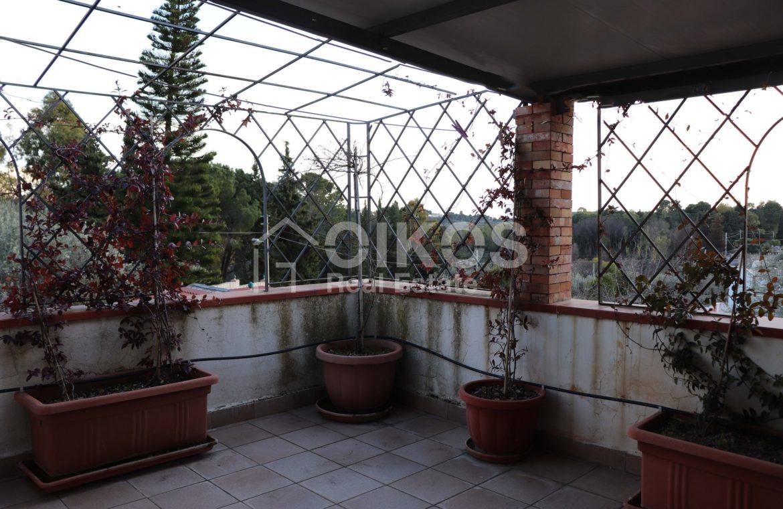 Villa con giardino e dependance 19