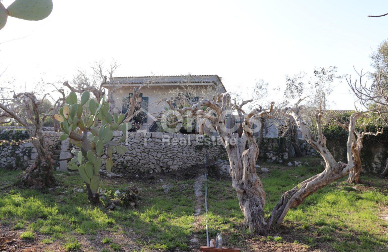 Antico casale siciliano in c da Rigolizia 04