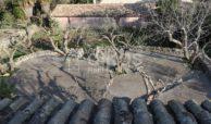 Antico casale siciliano in c da Rigolizia 11