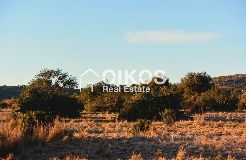 Terreno panoramico in contrada Meti 05
