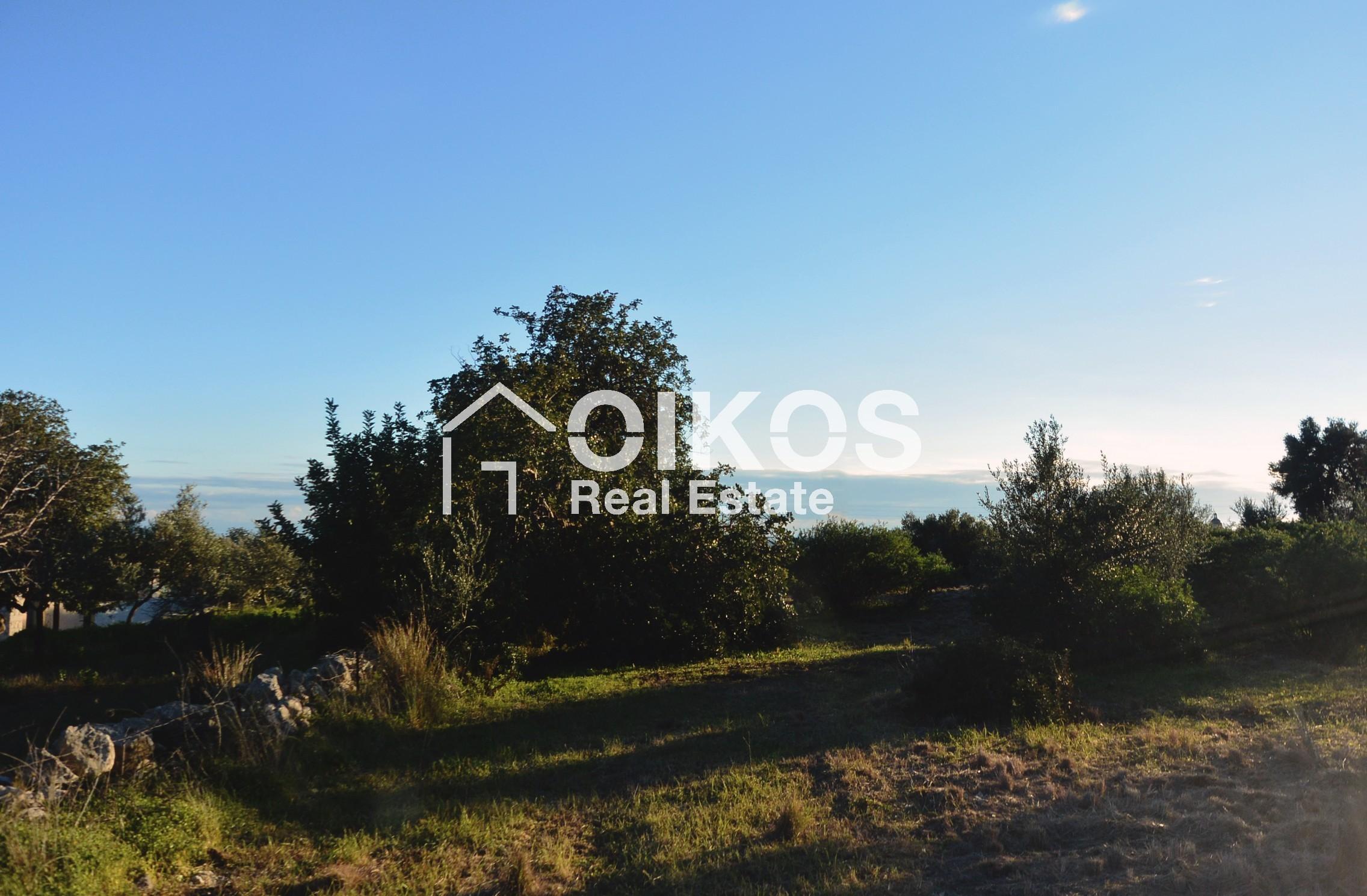 Terreno panoramico in contrada Meti 09