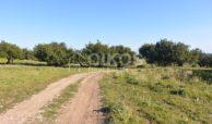 Terreno vista mare Vendicari (1)