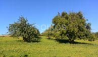 Terreno vista mare Vendicari (10)