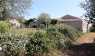 Villa Petracca (19)
