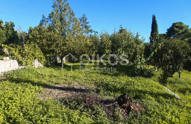 Villa indipendente con giardino c da Baronazzo 02