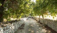 Antica masseria siciliana 32
