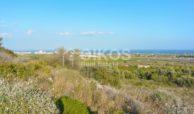 Terreno agricolo con vista mare in c da Mammanelli 06