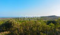 Terreno agricolo con vista mare in c da Mammanelli 07