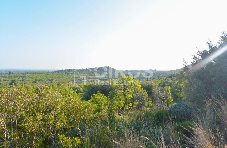 Terreno agricolo con vista mare in c da Mammanelli 08
