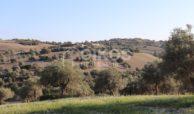 Casale sui monti Iblei03
