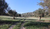 Casale sui monti Iblei04