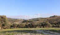 Casale sui monti Iblei11