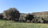 Casale sui monti Iblei13