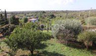 Villetta a mare con dependance e giardino13