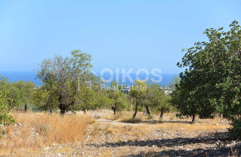 Terreno panoramico in c da Petrara 01