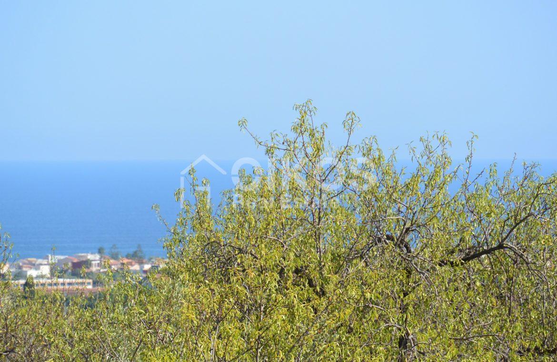 Terreno panoramico in c da Petrara 02