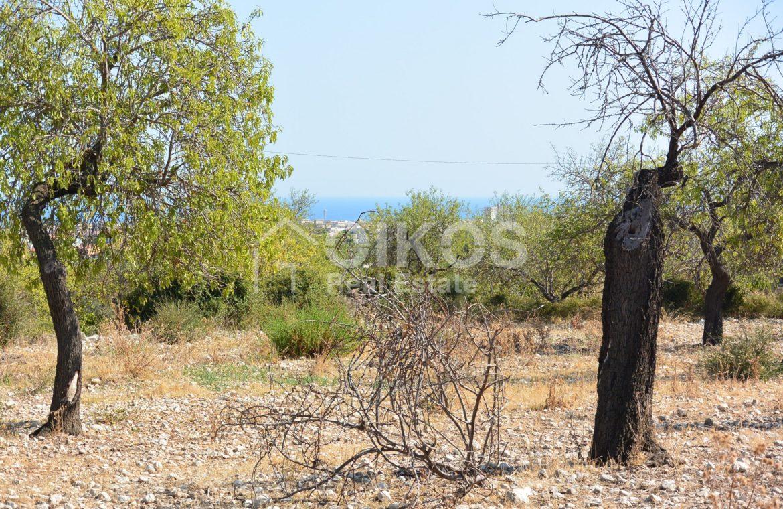 Terreno panoramico in c da Petrara 03