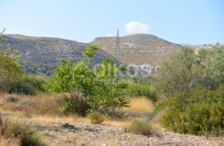 Terreno panoramico in c da Petrara 06