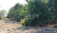 Terreno panoramico in c da Petrara 10