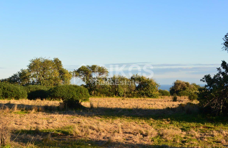 Terreno agricolo in c da Meti 05