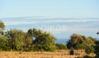 Terreno agricolo in c da Meti 06