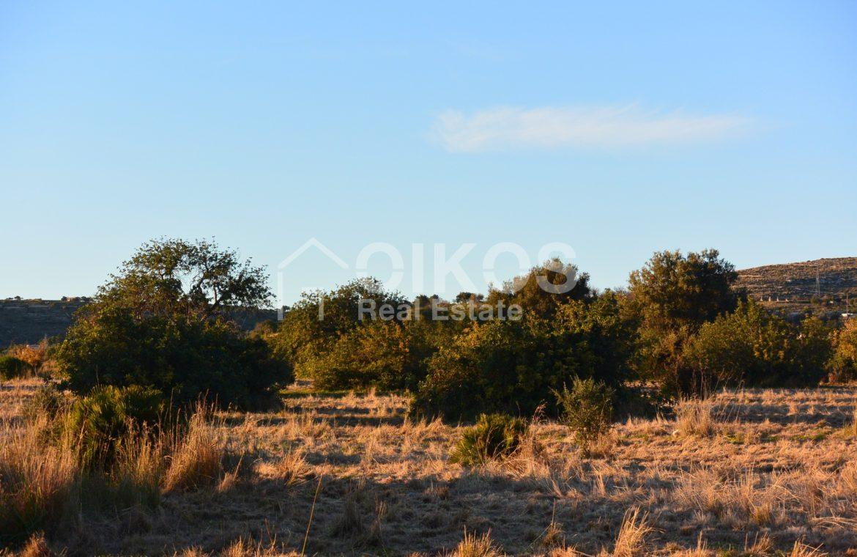 Terreno agricolo in c da Meti 15