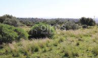 Terreno agricolo in c da Meti 19