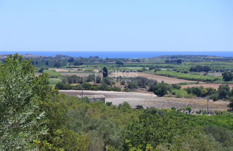 Villa Opuntia (24)