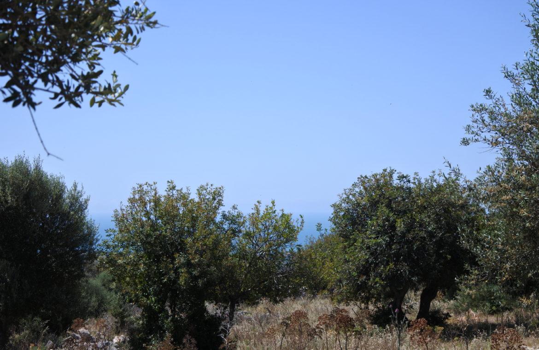 Terreno con vista17