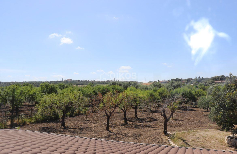Villetta degli ulivi (10)
