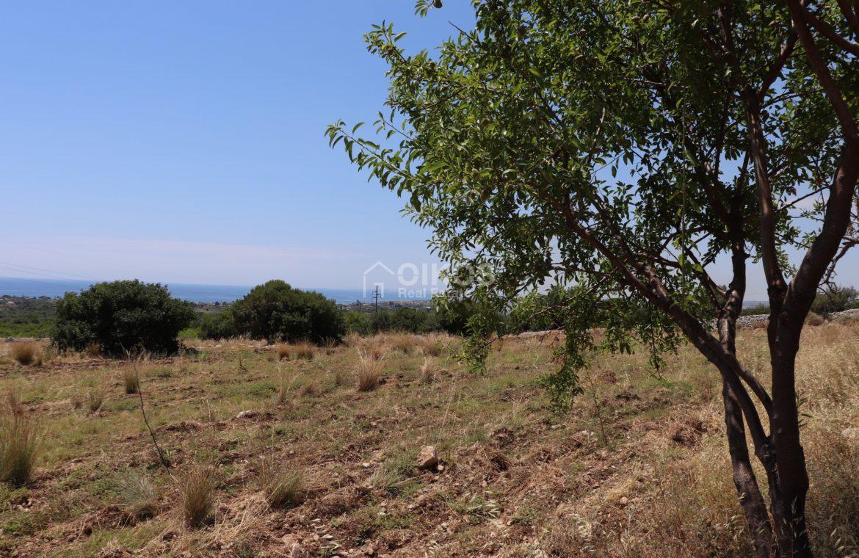 Terreno con caseggiato vista mare3