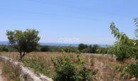 Terreno con caseggiato vista mare7