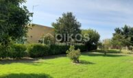 Villetta con terreno e ulivi4