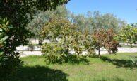 Villa con panorama13