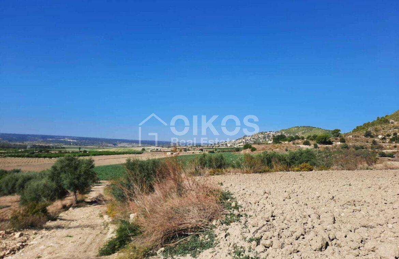Terreno agricolo c da Renna8