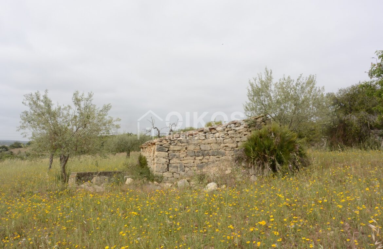 Casa con terreno in c da Renna15