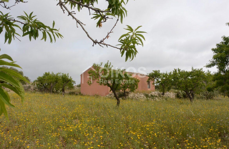 Casa con terreno in c da Renna2