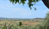 Terreno panoramico2