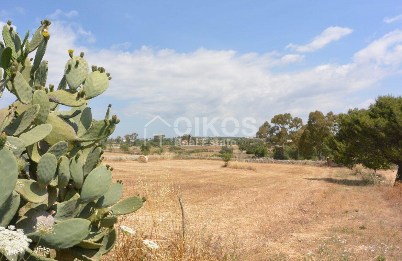 Terreno agricolo c da Sarculla5