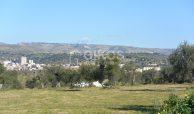 Terreno edificabile con vista su Noto (2)